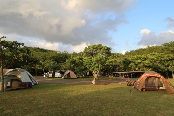 沖縄県東村「つつじエコパーク」夕暮れのキャンプ場オートサイト