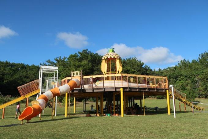 沖縄県東村「つつじエコパーク」の大型lコンビネーション遊具