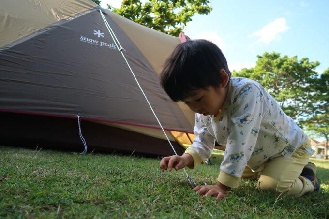 沖縄県東村「つつじエコパーク」キャンプ場で虫探しをするお子サマー