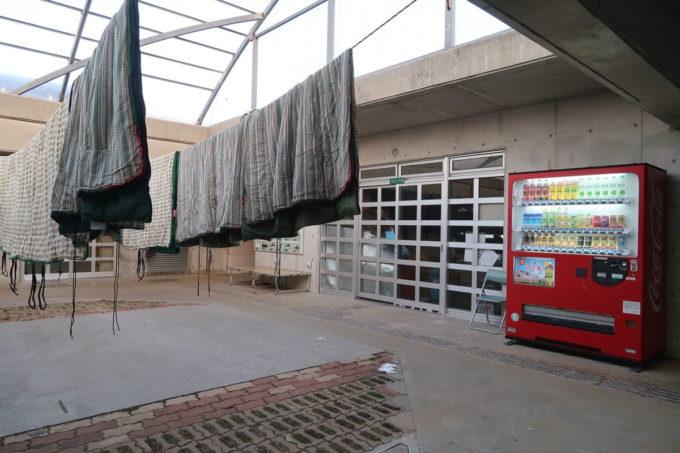 沖縄県東村「つつじエコパーク」キャンプ場に干される寝袋など