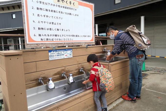仙台市「八木山動物公園」動物との触れ合いの前後に手洗いをする