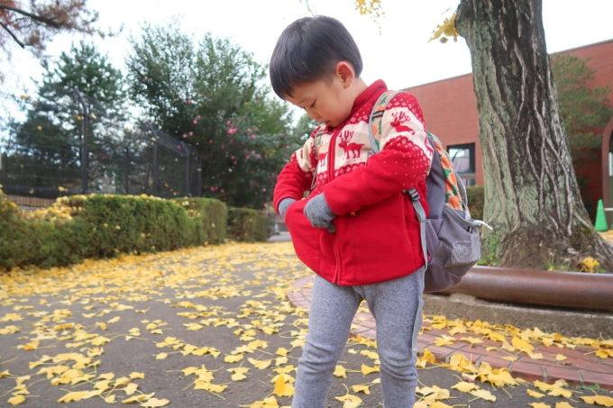 仙台市「八木山動物公園」イチョウの落ち葉をポケットに詰め込むお子サマー