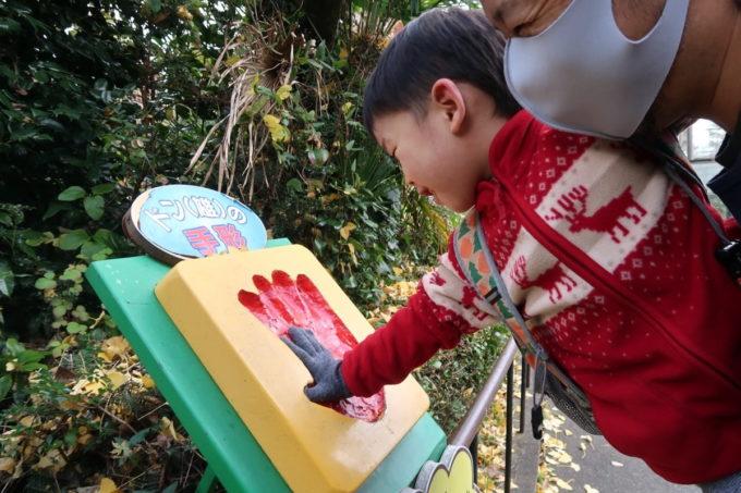 仙台市「八木山動物公園」亡くなったゴリラの手形に合わせるお子サマー