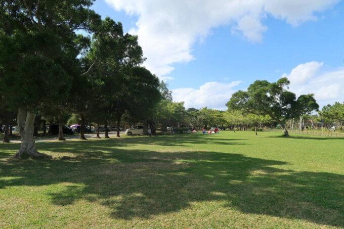 沖縄県総合運動公園キャンプ場の広々としたサイト
