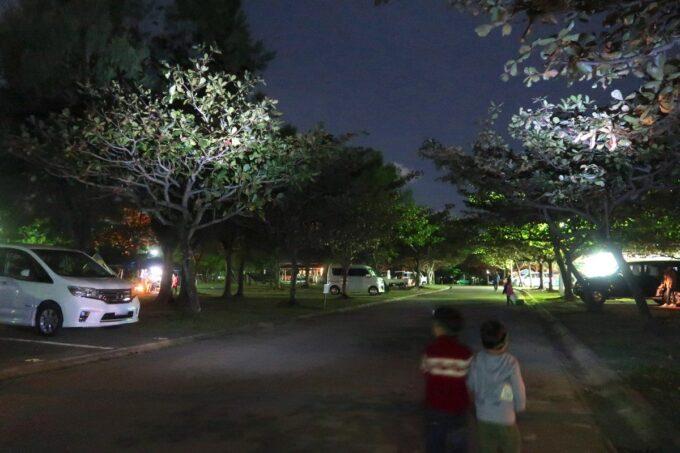 夜、沖縄県総合運動公園キャンプ場で冒険しに行った