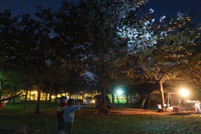 沖縄県総合運動公園キャンプ場の夜のキャンプサイトの様子