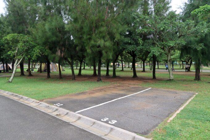 沖縄県総合運動公園キャンプ場のサイト(区画32・33)