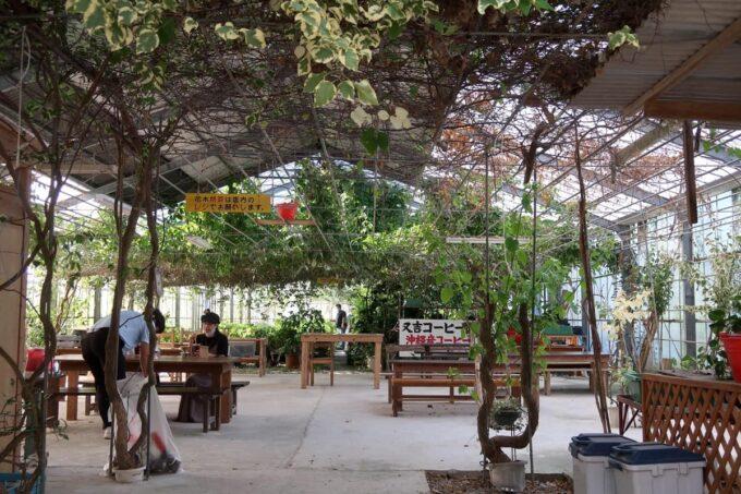 沖縄県東村「又吉コーヒー園」の温室テラス席