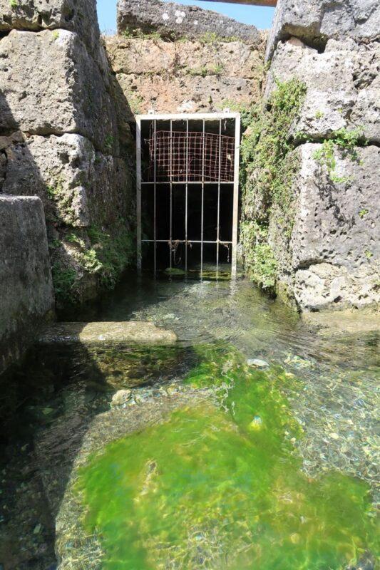 糸満「与座川(ヨザガー)」水路は流れがあるが下流には網があって流されないようになっている