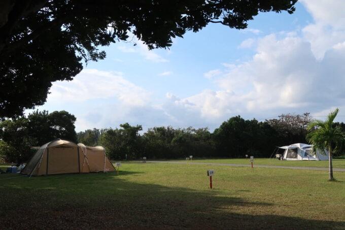 沖縄県金武町「ネイチャーみらい館」の特別キャンプ区画