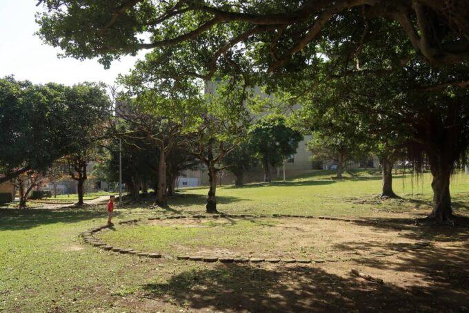 沖縄市「大城鶏飯(おおぎけいはん)」をテイクアウトし、の近くにある八重島公園で食べた