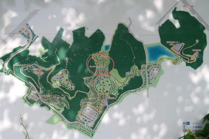 愛媛県松山市「松山総合公園」の全体マップ
