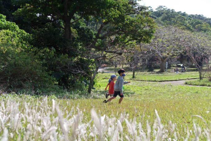 沖縄市「八重島公園」はらっぱで走りまくるお子サマーとお友達