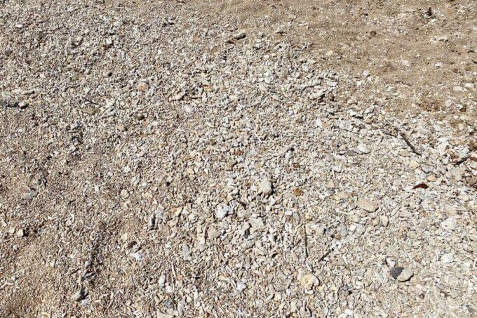 読谷村「渡具知ビーチ」の足元は砂と珊瑚が混ざった状態
