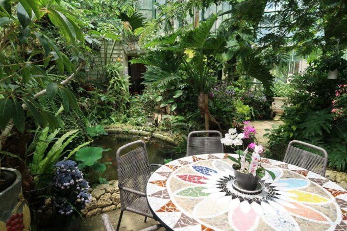 南城市「ガーデンレストラン花さんご」植物園の中にあるテラス席