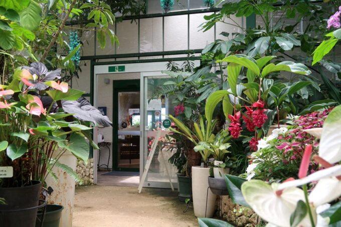 南城市「ガーデンレストラン花さんご」のレストラン入り口
