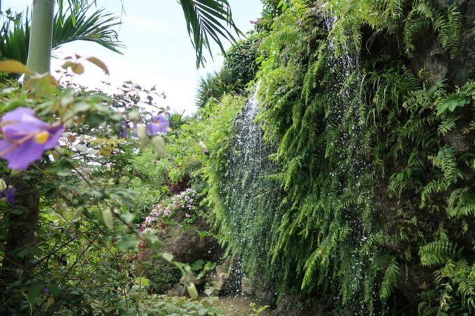 南城市「ガーデンレストラン花さんご」お庭の滝が涼しげ