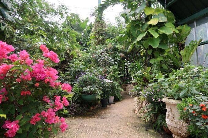 南城市「ガーデンレストラン花さんご」植物園のような建物