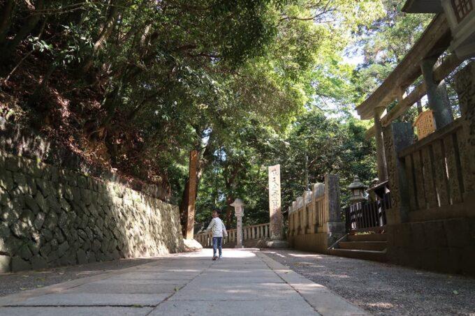 香川・金刀比羅宮の道を行くお子サマー